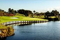 Book a Tee Time at the Best Golf Course in South Florida