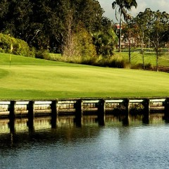 Golf in South Florida, A Tropical Experience