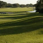 Ladies Golf, Women's Golf South Florida