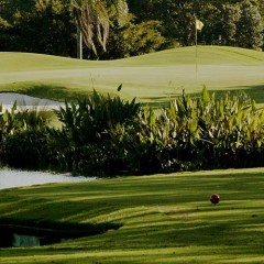 January 2016 Greens Fee Special – Hollywood, Florida Golf Course