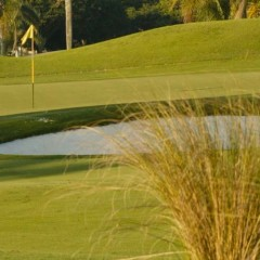 A Beacon of Excellence in South Florida Golf