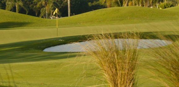 February Broward County Golf Course Greens Fee Special