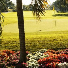 Enjoy South Florida Golf